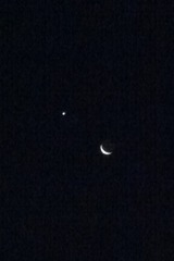 This morning's 5% waning crescent moon and venus
