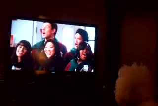Our Dog Singing Glee Christmas Song
