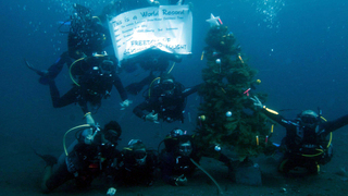 Iranian Christian Convert Set Deepest Underwater Christmas Tree Record!