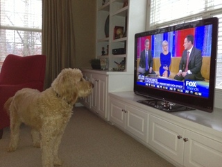 Gus Jones watching the morning news
