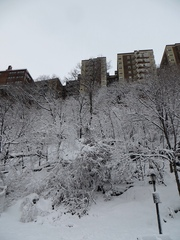 Snowstorm Nemo in Washington Heights in Upper Manhattan