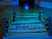 WagJag Wrestling Ring!